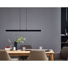 schöner wohnen kollektion pendelleuchte stripe led schwarz 1 flammig