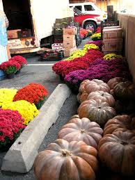 Maryland Pumpkin Patches Near Baltimore by 1025 Best Food North America Images On Pinterest North