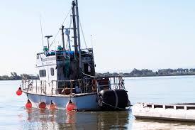 100 Livingston Trucking Salmon Release BayDelta Fish Wildlife Office