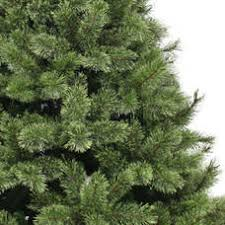 Kmart Christmas Trees Jaclyn Smith by Jaclyn Smith 7 5 U0027 Clear Edison Cashmere Spruce Tree Kmart