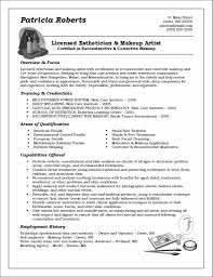 Functional Resume Example | Distinctive Career Services Technical Skills How To Include Them On A Resume Examples Customer Service Write The Perfect One Security Guard Mplates 20 Free Download Resumeio 8 Amazing Finance Livecareer Unique Summary Statement Atclgrain Functional Example Disnctive Career Services For Assistant Property Manager Sample Maintenance Technician Rumes Lovely Summaries Of Professional 25 Statements Student And Templates Marketing