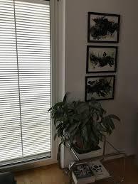 wildes wohnzimmer livingchallenge plantlover