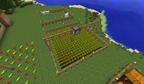 Minecraft Pumpkin Seeds Wont Plant by Just A Little Tip To All Farmers Out There Minecraft