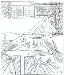 126 Best Coloring Pages Nature Images On Pinterest