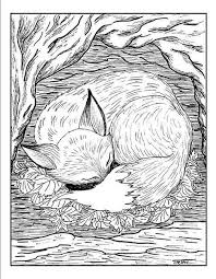 Fox In Burrow Adult Coloring Pages Provide More Intricate Designs And Sophisticated Themes Than The Usual Is Definitely Not Just