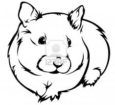 Hamster Coloring Pages Printable With Of Hamsters New Drawing