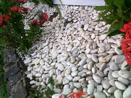 Diy Ideas Outdoor Home Garden With White Rocks For Landscaping As Within