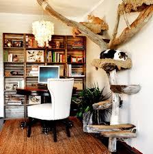 Wooden Designer Shelf Pet Society by 878 Best Cat Toys Etc Images On Pinterest Cat Stuff Cat