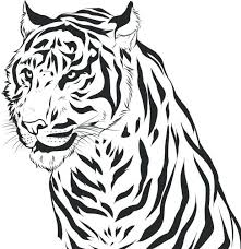 Printable Lion And Tiger Coloring Pages Daniel Page Baby Print