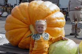 Fargo Moorhead Pumpkin Patches by Pumpkin Patches In North Dakota Road Trips For Families