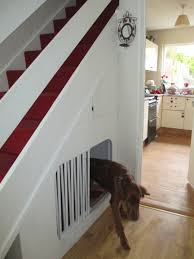 Pet Stairs For Tall Beds by I Have A Large Dog And I Heard That Dogs Are Most Comfortable