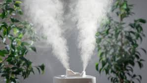 luftbefeuchter test 2021 die besten raumbefeuchter chip