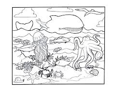 Ocean Animal Coloring Pages Pictures