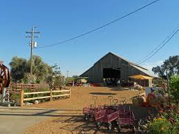 Pumpkin Patch Fresno Ca Hours by Pumpkin Patches And Fall Farm Events U2014 Merced County Events