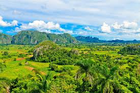 Vinales Is A Small Town Where You Will Find Many Wooden Houses With Porches Today Walk Along The Tobacco Fields Accompanied By Local