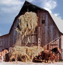Horses   If I Had A Blog Top Country Wedding Songs Gac The Hay Is Baled Eden Hills Passionettes And Albany State Band Fight Songhay In The Middle Hauling Hay 1950s Farm Scenes Pinterest Bethunecookman University Lets Go Wildcatshay In Hd Youtube Haystack Lounge Decor My Wife Yvette Decor Best 25 Barn Party Decorations Ideas On Wedding Environmental Art Archives Schuylkill Center For Mchs Presidents Page Miller County Museum Historical Society Just Me June 2013 Pating Unique Bale Of Bales Straw