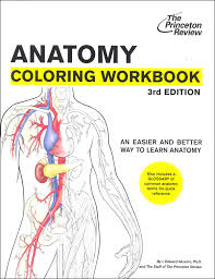 Human Anatomy Diagram Coloring Book Princeton Review 3ed Main Photo White Cover Background Workbook An Easier