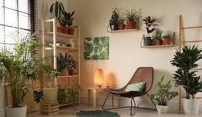 luftbefeuchter für wohnzimmer brune magazin