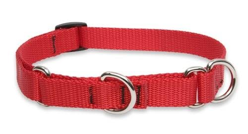 "Lupine Pet Basics Martingale Collar for Small Dogs - Red, 10-14"" x 3/4"""