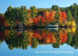 Pumpkin Festival Keene Nh 2014 by Foliage In Keene New Hampshire Mitchell R Grosky Photography Blog