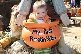 Flower Mound Pumpkin Patch Groupon by 100 Flower Mound Tx Pumpkin Patch 25 Beste Ideeën Over