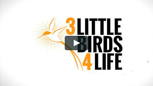 3 Little Birds 4 Life - Overview On Vimeo New Dation Supports Truck Driver Traing Dctc News Michelin Centre Mwheels Collaborating To Improve Cv Wheel Santas For The Other 364 Days Of Year Daily Journal Ctc Offers Cdl In Missouri Student Drivers Ntc Driving School Photos Thiruthuraipoondi Tivarur Pictures Mtc On Vimeo Craigslist Murder Suspect Shot Teen At Lunch Then Returned Work Simon Naquin Western Express Linkedin East Tennessee Class A Commercial 88m Instagram Photos And Videos Hungramcom Ripoff Report Complaint Review Hazelwood