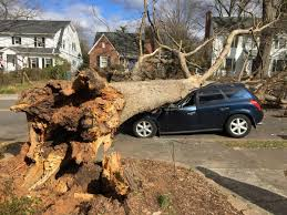 100 Ogburn Truck Parts Thousands Without Power In Forsyth County As Storm Downs Trees