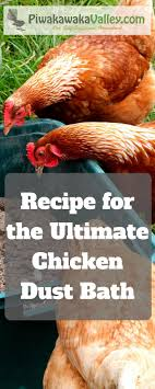 The Ultimate Chicken And Rabbit Dust Bath Recipe | Backyard ... Why Should You Compost Chicken Manure Is Naturally High In 1105 Best Backyard Project Images On Pinterest Raising Baby Chick Playground Coops Pet Chickens And Worming Backyard Controversial Here Are Tips How To Naturally Treat Coccidiosis Your Chickens Natural Treatment Of Vent Prolapse Ducks 61 To Me Raising Means Addressing Healthkeeping Deworming Homesteads