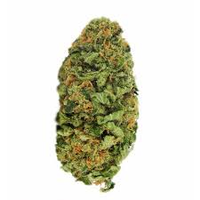 Northern Lights Seeds Guaranteed U S Delivery & Germination