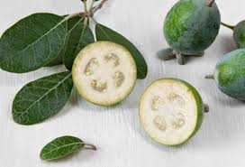 use guava leaves to beat wrinkles acne dark spots and skin