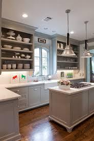 Gray Kitchen Cabinets Transitional kitchen Benjamin Moore