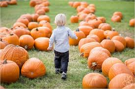 Best Pumpkin Patch Des Moines by 10 Milwaukee Area Pumpkin Farms To Visit This Fall