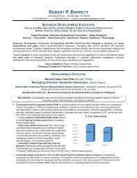 Business Development Manager Resume Executive Template India 533