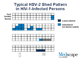 Herpes Viral Shedding Test by Herpes And Hiv Disease Interactions In 2 Intersecting
