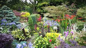 Paradise Garden Garden Ideas