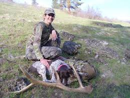 Shed Hunting Southern Utah by Shed Hunting In Oregon Has Got This Pup All Worn Out Great Find