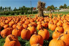 Wv Pumpkin Festival Milton Wv by Hdcalendar Herald Dispatch Com