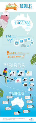 2016 Results – Aussie Backyard Bird Count Introduced Birds Birds In Backyards Best 25 Bird Watching Ideas On Pinterest Pretty Backyard 510 Best Birds Of A Feather Images Blackwinged Stilt 2016 Results Aussie Count Rainbow Lorikeet Evolve Their Behavior Without Chaing Bodies The To Feed Or Not To Audubon Female Blackbird Front Yard And Landscaping Ideas Designs Country Garden Striped Honeyeater Inland E Australia My