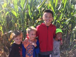 Pumpkin Patch Sacramento 2015 by Pumpkin Patch St Ignatius Parish