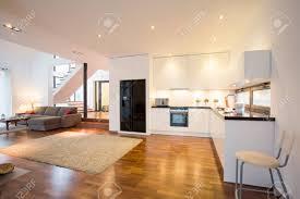 offene küche und wohnzimmer in luxus villa