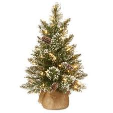 National Tree Company 2 Foot Glittery Bristle Pine Pre Lit With Warm White