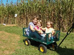 Patterson Pumpkin Patch Nc by Find Corn Mazes In Mount Ulla North Carolina Patterson Farm In