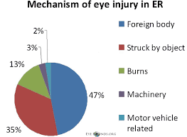 Chorioretinitis Sclopetaria A Systems Based Approach To Eye Injury