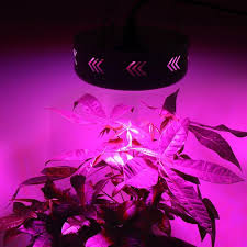 Grow Lamps For House Plants by Amazon Com Led Grow Light Beamnova 150w Ufo Full Spectrum