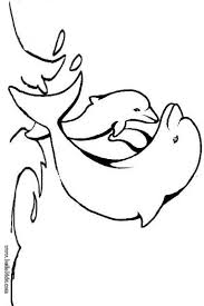 Baby Dolphin Coloring Page Color Online Print