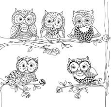 Amazon Owl Town Adult Coloring Book 31 Stress Relieving Designs