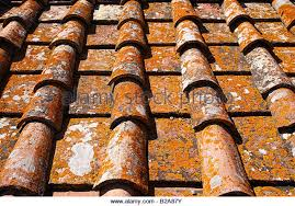 flat clay roof stock photos flat clay roof stock