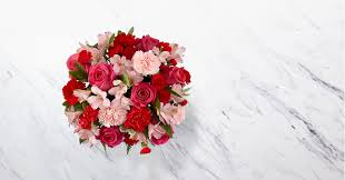 You're Precious™ Bouquet 1800 Flowers Coupons Boston Flower Delivery Promo Codes For 1800flowers Florists Thanks Expectationvsreality How Do I Redeem My 1800flowerscom Discount Veterans Autozone Printable Coupon June 2019 Sears Code Online Crocs Promo January Carters Canada Airsoft Gi Coupons Promotional Flowerscom 10 Off Amazon White Flower Farm Joanns 50 Ares Casino Flowerama Uber Denver Jetblue December 2018 Kohls 20 Available September
