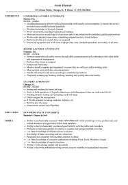 Download Laundry Attendant Resume Sample As Image File