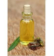 citronella oil in bengaluru karnataka citronella ka tel